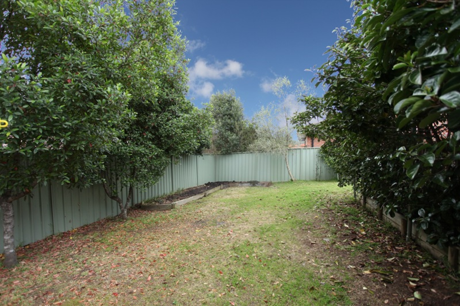 49 Morton Terrace,Harrington Park,NSW,3 Bedrooms Bedrooms,1 BathroomBathrooms,House,Morton Terrace,1091