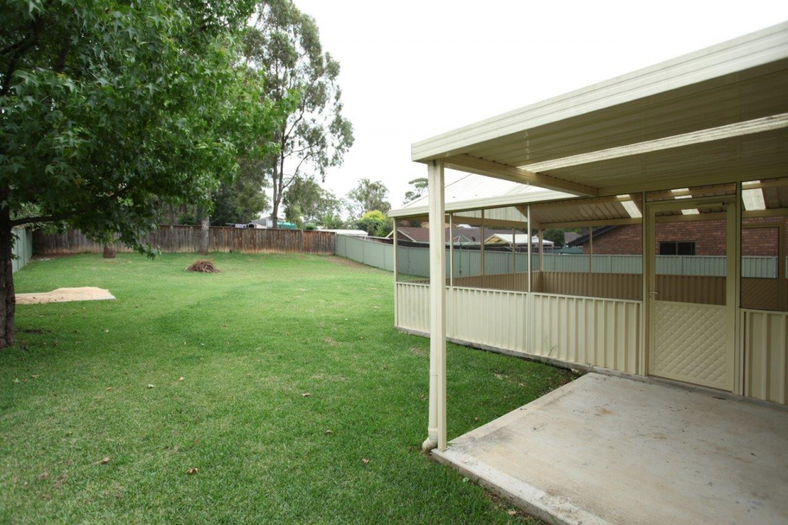 31 McCall Avenue,Camden South,NSW,3 Bedrooms Bedrooms,1 BathroomBathrooms,House,McCall Avenue,1022
