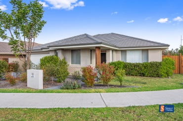 308 South Circuit,Oran Park,NSW,4 Bedrooms Bedrooms,3 BathroomsBathrooms,House,South Circuit,1488